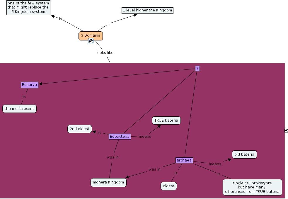 Single domain konzept