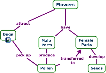 pollen map with C Map 20flowers 20old 3 on Tiger Cranefly in addition 10 Miles Of Railroad To Be Built For Volvo Plant In Berkeley County together with C Map 20flowers 20old 3 furthermore Anther in addition Pistil.
