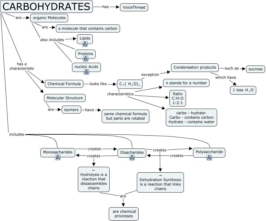 Organic Molecule Concept Map.Carbohydrates