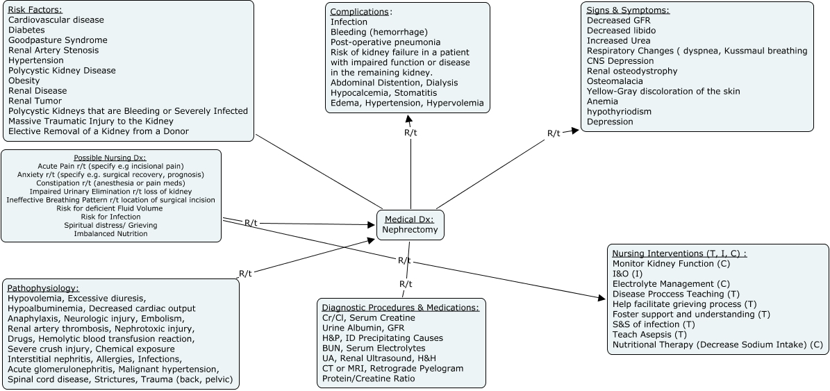 Renal Failure Concept Map.Nephrectomy