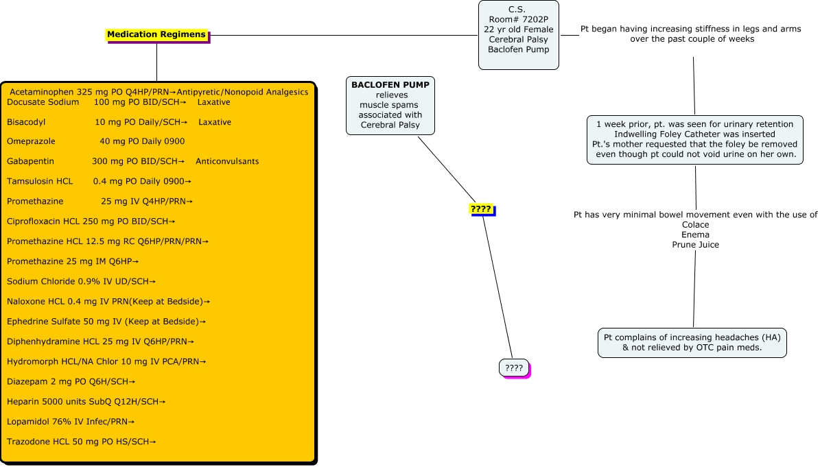 Client CS Med Surg This Concept Map Addresses Patient With - 1 in 10 babies cp map of us
