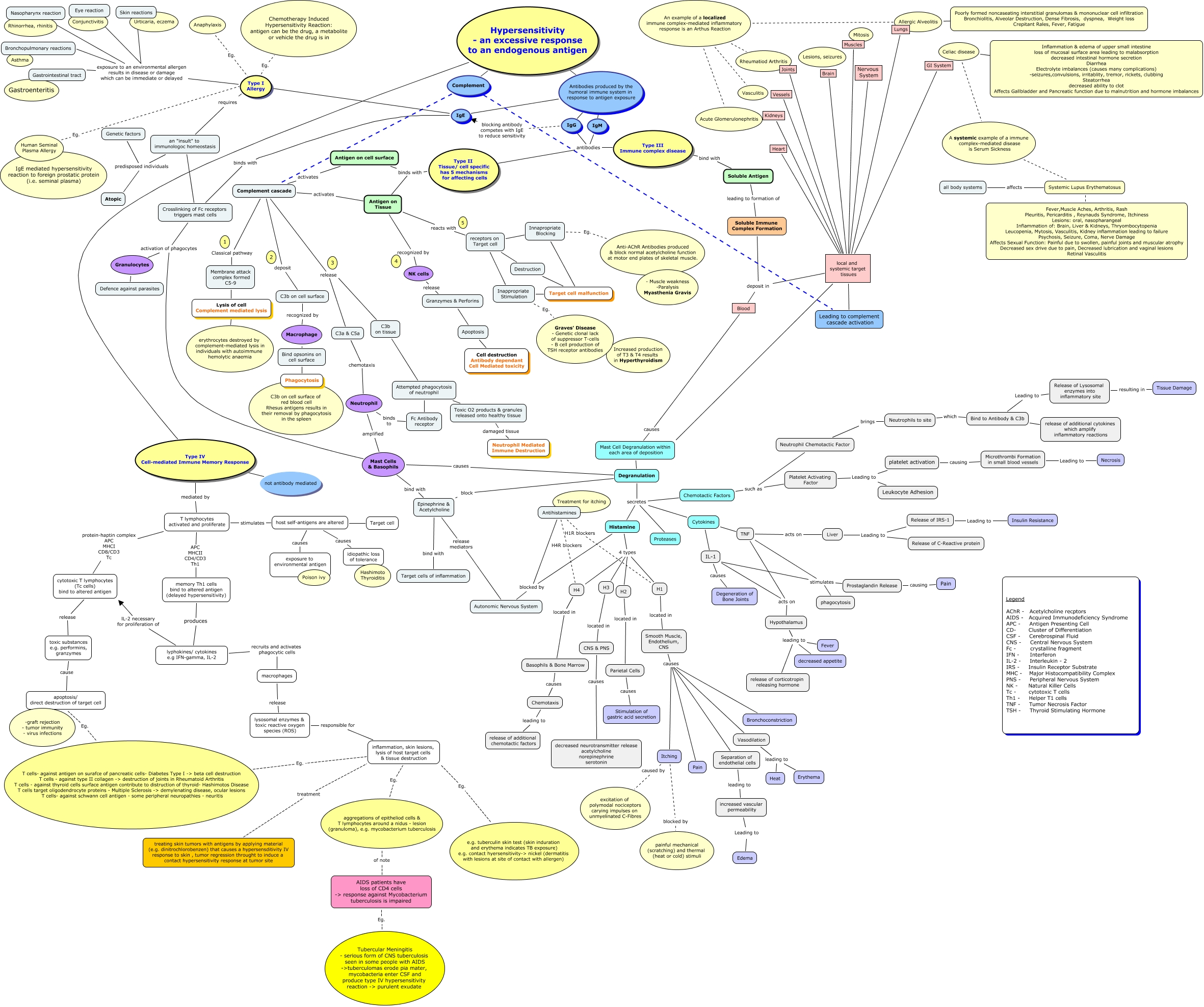 Types Of Hypersensitivity A Concept Map For Advanced Pathophysiology
