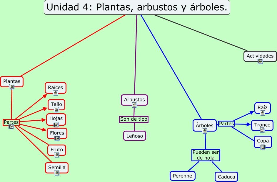 Unidad4 las plantas for Plantas y arbustos de exterior
