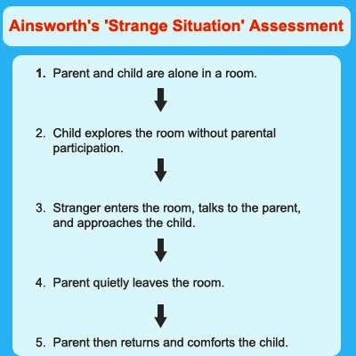 analysis of ainsworth s strange situation The human-dog relationship was described by means of a factor analysis in a 3-dimensional factor space: anxiety, acceptance, and attachment a cluster analysis revealed 5 substantially different classes of dogs, and dogs could be categorized along the secure-insecure attached dimensions of ainsworth's original test.