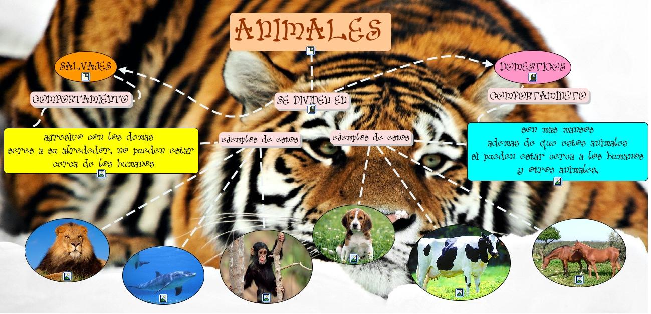 Neuland S01: Lamina De Animales Domesticos Y Salvajes: Animales