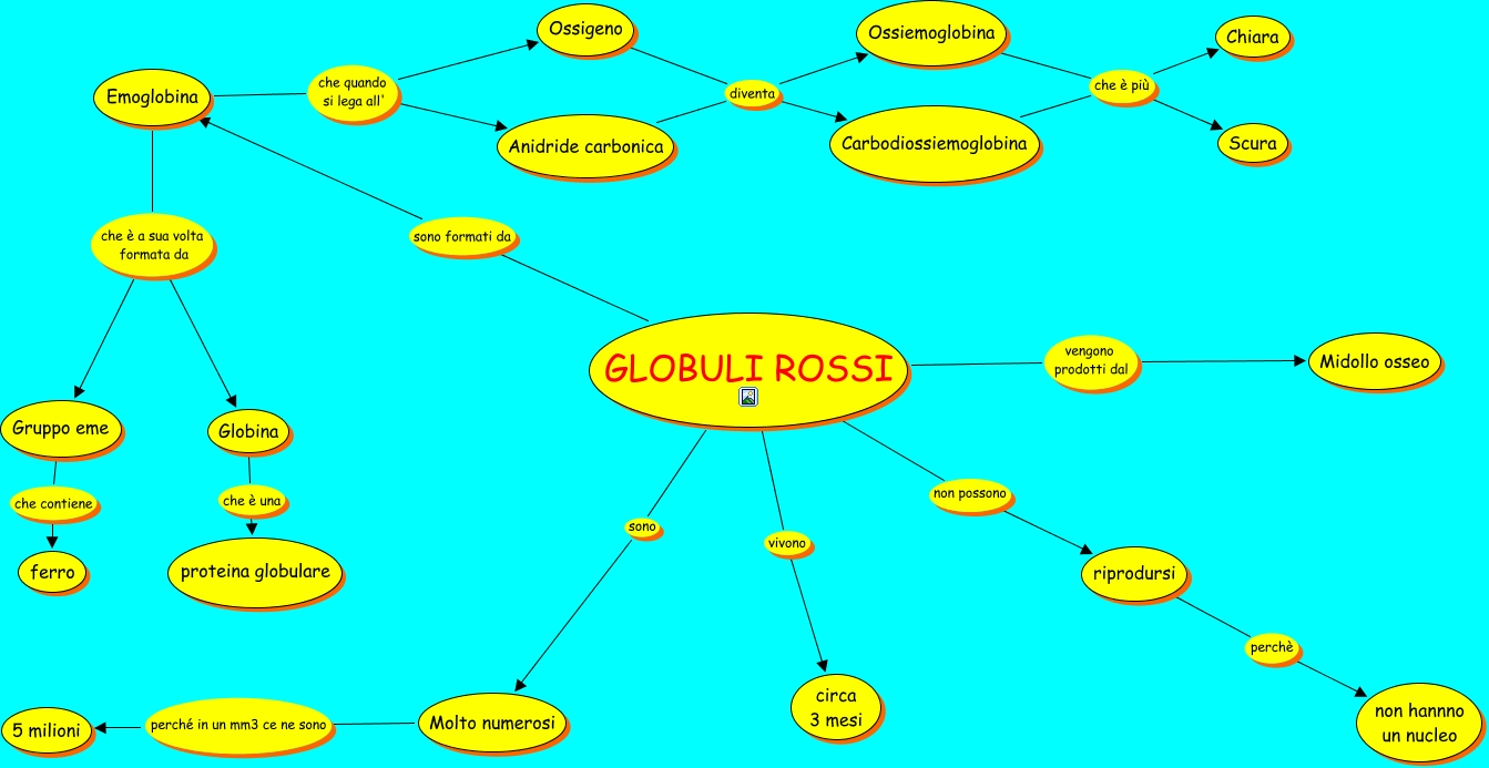 Globuli 20rossi on concept map