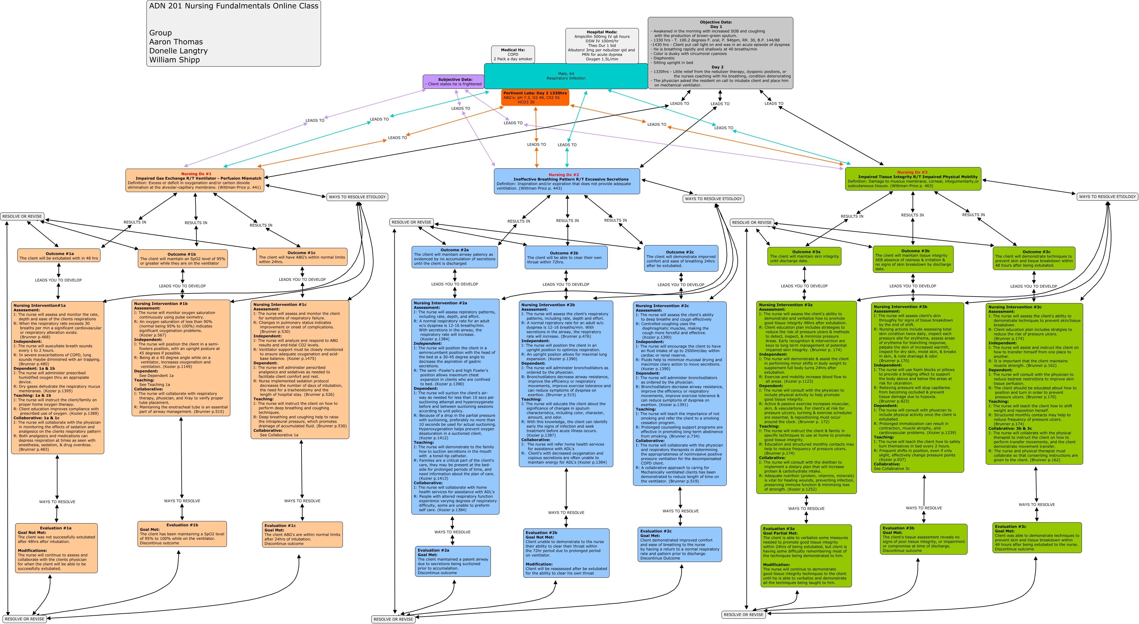 Adn201 Nursing Process Group Project 2