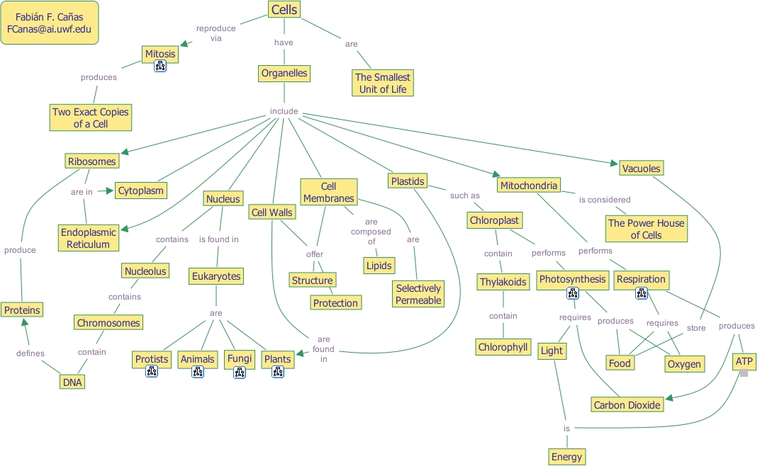 Ihmc Cmaptools Concept Map Cells